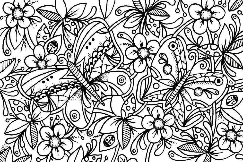 ButterflyColourBlank1000